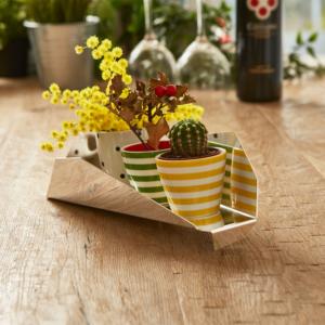 Centro tavola moderno con piante grasse | Mipiacemolto