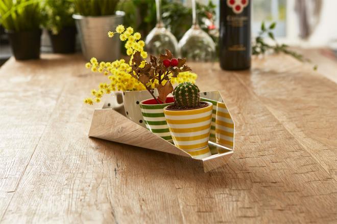 Centro tavola argentato moderno con piante grasse | Mipiacemolto